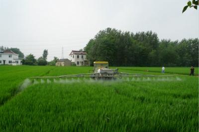 全市小麦将进入病虫防治关键期