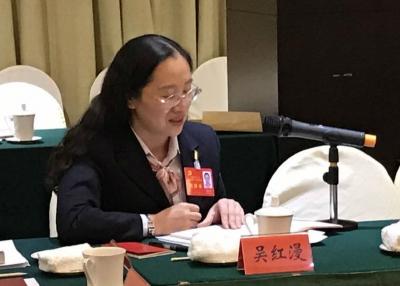 扬州党代表的上会日记(3):吴红漫