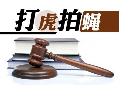 证监会原党委委员、副主席姚刚受贿、内幕交易案一审宣判