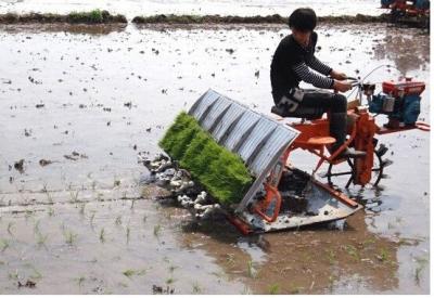 市人大视察粮食生产全程机械化推进工作