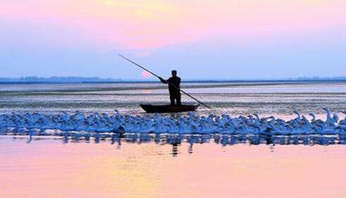 扬州水环境获省财政正向补偿,而这个地方获补偿最高