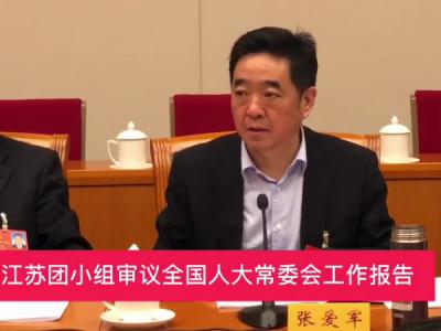 两会视频|江苏团审议全国人大常委会工作报告,张爱军发言
