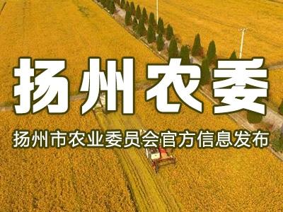 【扬州农委发布】大数据!扬州有机农产品基地超1.5万亩