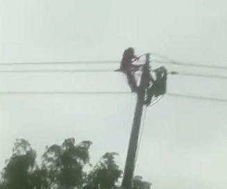 【视频】点赞!台风来袭,扬州这群人却逆风前行……