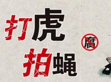南京市江宁区人大常委会原副主任王登华接受纪律审查和监察调查