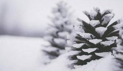江苏省气象台发布暴雪警报!明日起全省有一次大范围雨雪冰冻天气