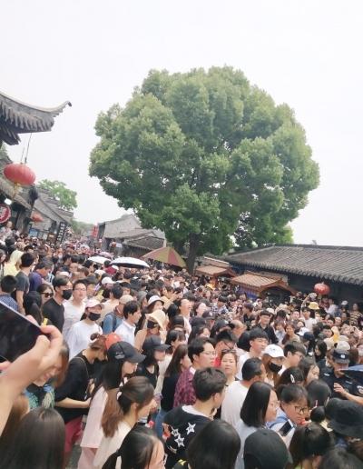 """【文化+】扬州变成""""大型追星现场"""",明星们来扬关注啥?"""