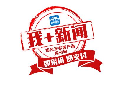 【我+新闻】突发:京沪高速宝应段一轿车冲破护栏,翻下道路