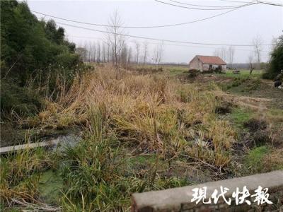 """【爱国情 奋斗者】贫困村来了""""好人""""书记,废池塘成了致富香饽饽"""