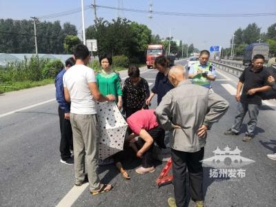 """【我+新聞】暖心!揚州一老太被貨車撞倒,周圍群眾臨時當起了""""交警""""……"""