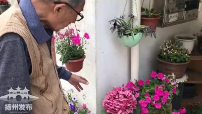 【花坊錄】每朵花都是愛的模樣
