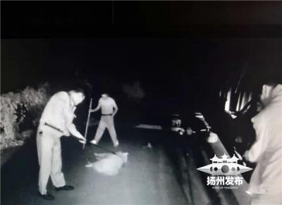 凌晨扬州一户人家宠物狗突发疯,连咬多人后逃窜,警方出动……