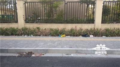 【马上办】遍布垃圾、树木枯黄……这条数百米道路究竟该归谁管理?