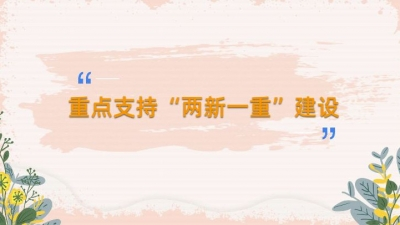 """【全国两会MGC】""""两新一重""""!总理报告新词了解一下!"""