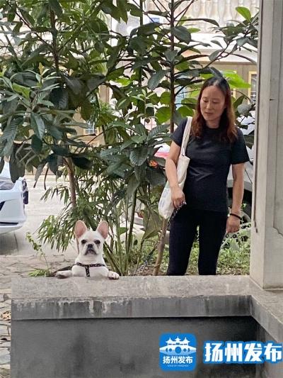 文明瞬间 | 身边人说身边事,鼎园社区劝导文明养犬