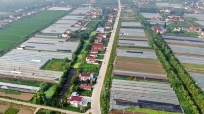 """江苏十条""""最美农路""""发布!扬州的是……"""