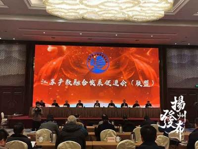 江苏产教融合发展促进会(联盟)在扬成立