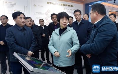 张宝娟赴宝应专题调研经济工作,提出这些要求……