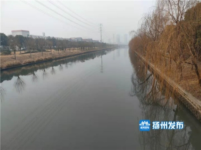 【马上办·后续】垃圾和杂物已被清理,横沟河周边环境变清爽了
