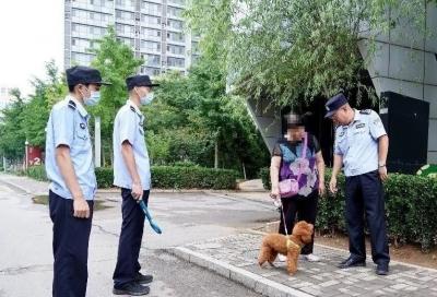 济南拟规定每户居民只能养1只小型犬,遗弃罚款两千