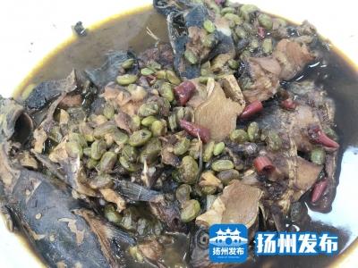 【一线故事】一盘毛豆米烧鲫鱼,感动社区网格员