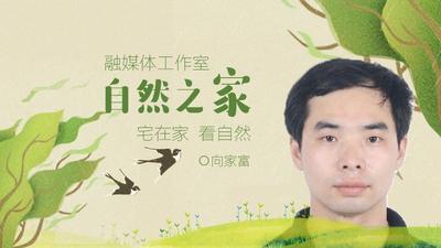 【自然之家·视频】扬州秋意浓,专家解码秋叶变色之谜