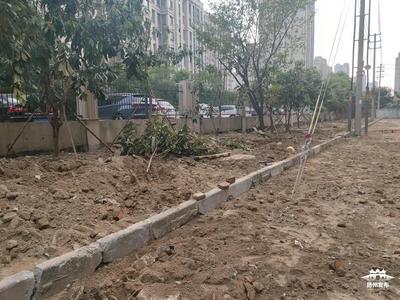 【马上办·视频】文昌北苑这块荒地将如何改造?物业回应……