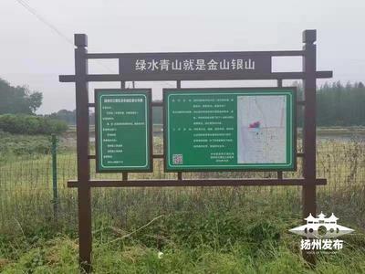 """扬州全面推行""""林长制"""" 建立四级林长制体系"""
