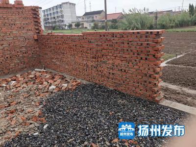 【马上办·视频】江都宜陵镇有人占用农田自建院子?相关部门回复:已责令停工