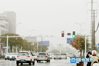【视频】烟雨朦胧扬州城